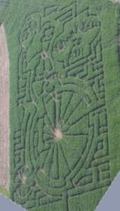 Corn Maze 2016 2