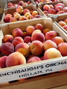 Flinchbaugh's Orchard & Farm Market Peaches
