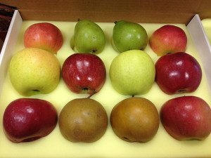 Flinchbaugh's Orchard and Farm Market Small Fruit Gift Box