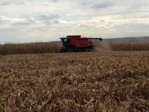 Ritchie harvesting (combining) corn in October