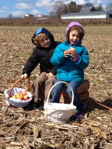Easter Apple Hunt